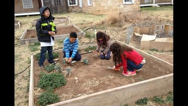 Students grow veggies, helping others