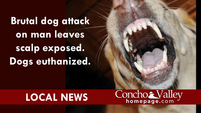 DOG ATTACK: Man brutally attacked, skull exposed — scalp missing, dogs euthanized